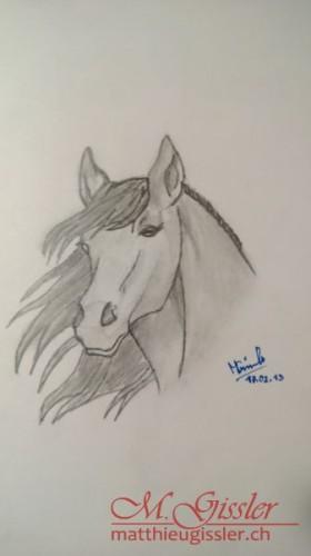 Pferdekopf - Erinnerungen